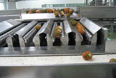 Mango Pineapple Juice Processing Line