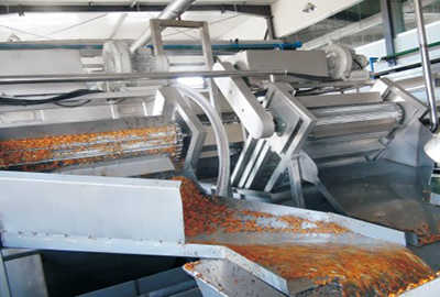 Sea-buckthorn Processing Line