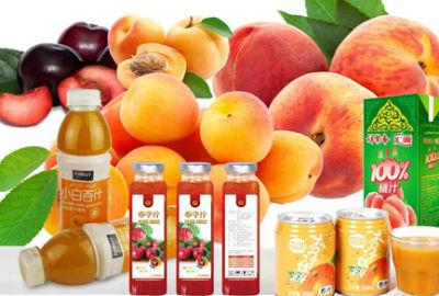 Apple Pear Processing Line